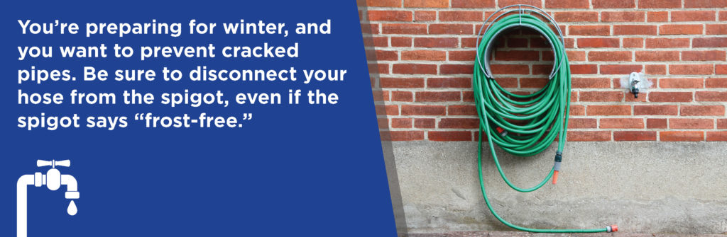 disconnect your hose from the spigot for winter