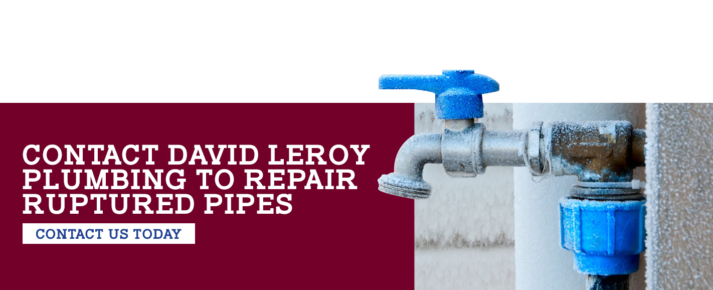 Contact David Leroy Plumbing to Repair Ruptured Pipes